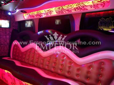Athena-Party-Bus-08-1