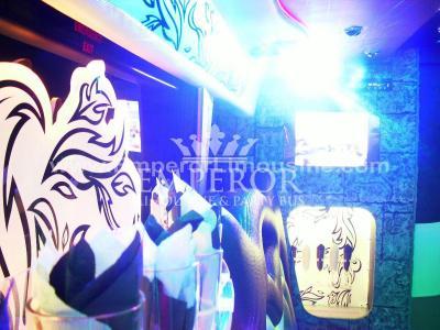 Athena-Party-Bus-13-1