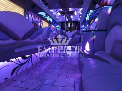 Titanium-Party-Bus-02-1