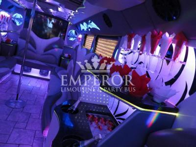 Titanium-Party-Bus-03-1