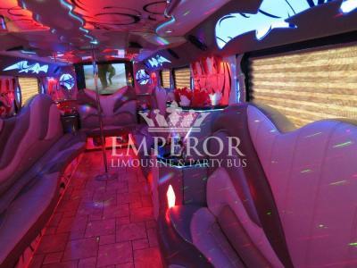 Titanium-Party-Bus-24-1